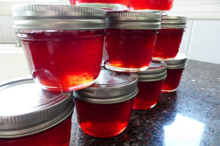 Nanking Cherry Jelly
