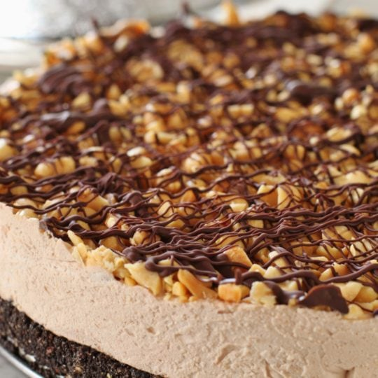 A rich chocolatey frozen peanut butter cake covered in peanuts, caramel sauce and chocolate sauce
