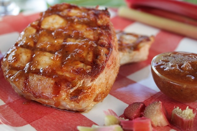 A Sweet n Sour Chunky Style Barbecue Sauce made from Rhubarb #nightshadefree #rhubarb #barbecue #grilling #sauce