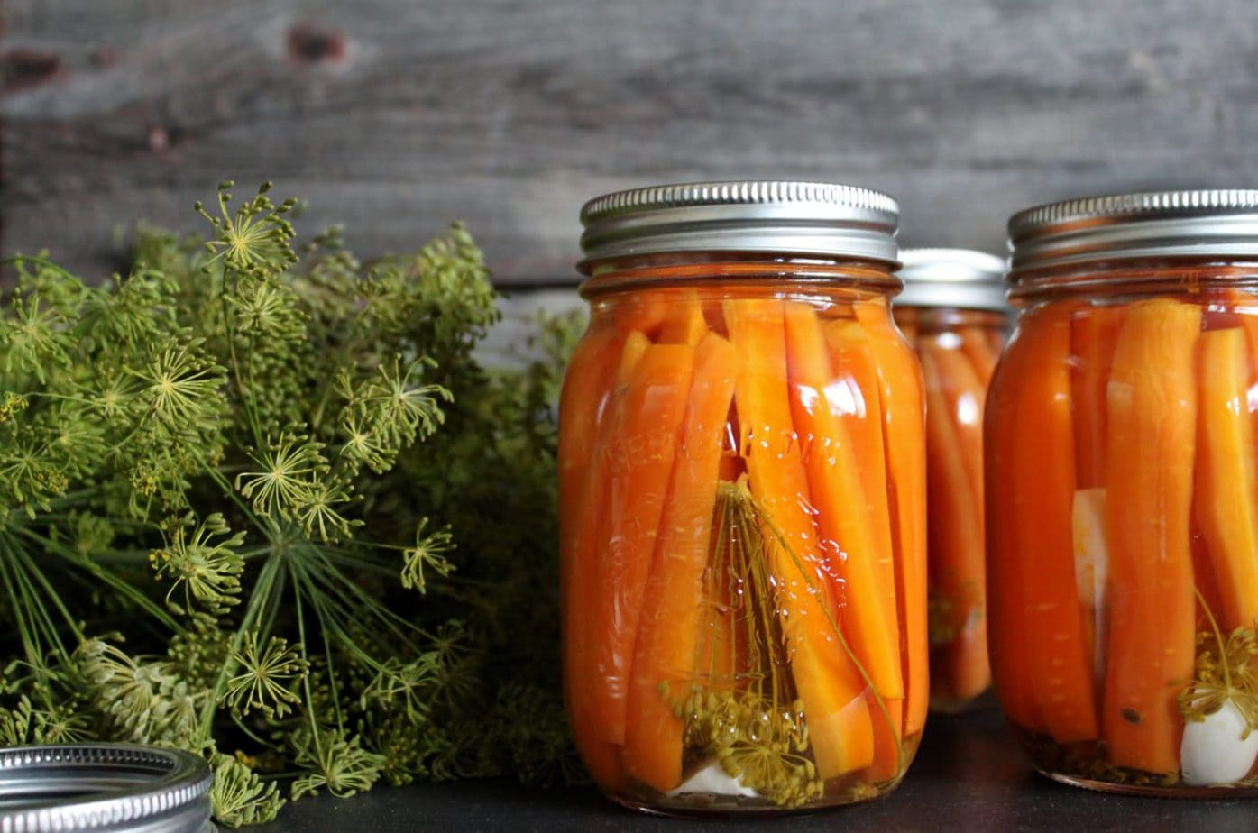 Pickled Carrots with Dill and Garlic - Dish 'n' the Kitchen A Jar of bright carrots, fresh dill, and garlic fill a jar surrounded by more fresh dill and garlic.