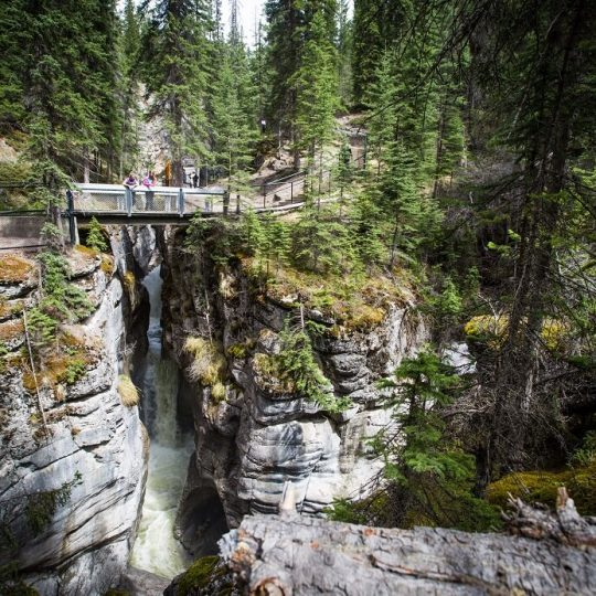 Maligne Canyon Wilderness Kitchen offers Jasper travelers a warm and authentic modern smokehouse experience in the Canadian Rockies. #TravelAlberta #CanadianRockies #MalignCanyon #MalignCanyonWildernessKitchen #MyJasper #Jasper #pursuitlife