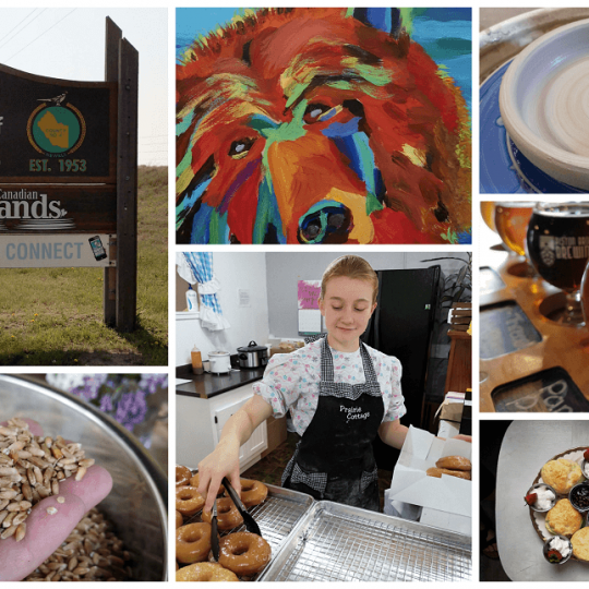 A montage of local business photos from Newell County Alberta.