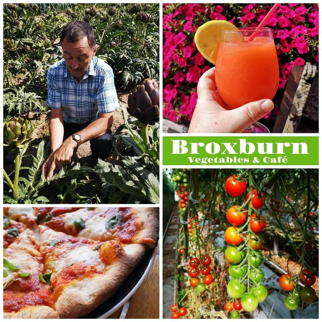 Wood fired pizza, tomatoes on the vine, a slushie drink, and a man in an artichoke field.