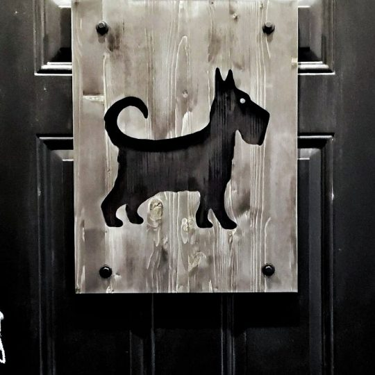 Rain Dog Bar - A black door with a dog shaped cut out.