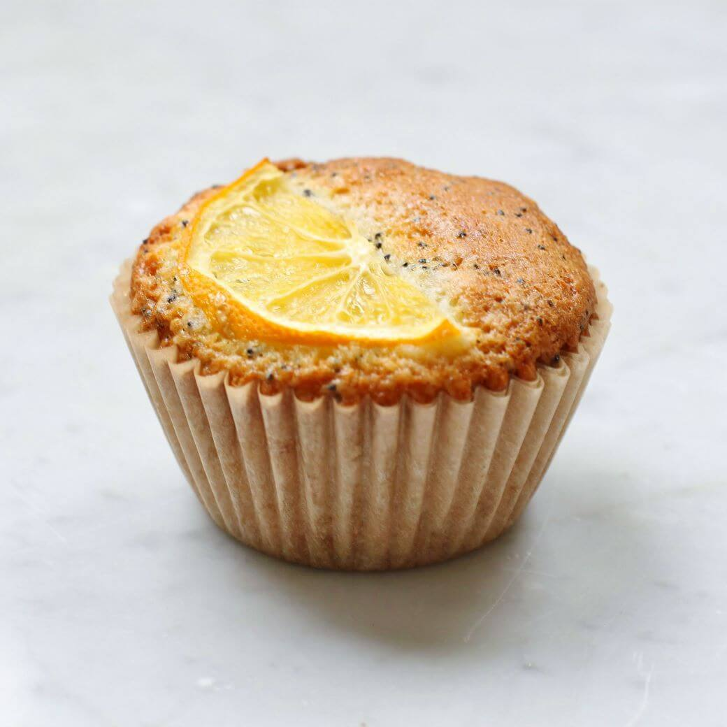 A single Lemon Poppy Seed Muffin topped with lemon slices.