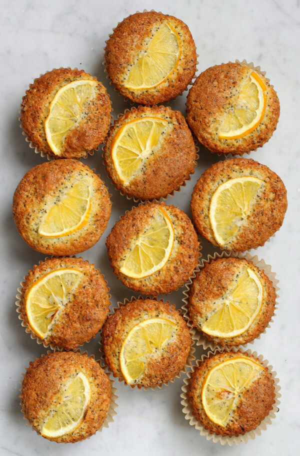 A dozen Lemon Poppy Seed Muffins topped with lemon slices.
