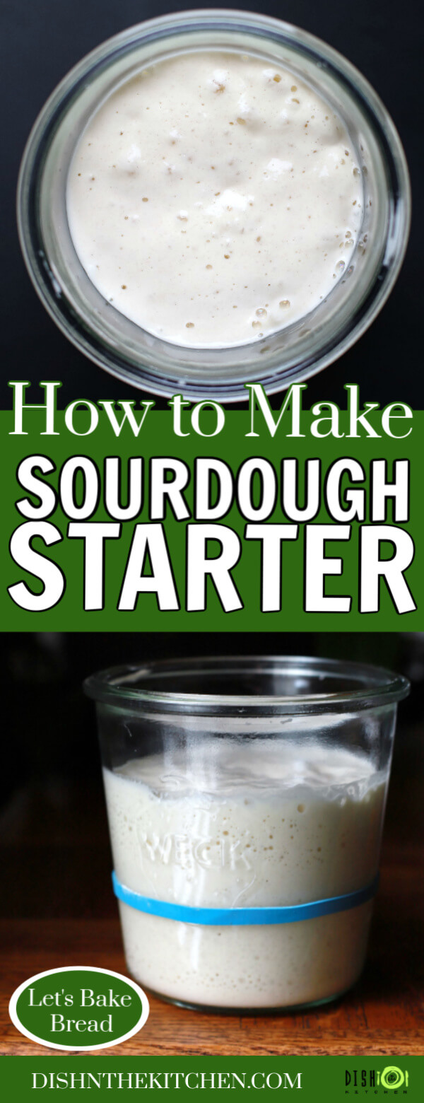 How to Make Sourdough Starter - Pinterest image showing a bubbly sourdough starter.