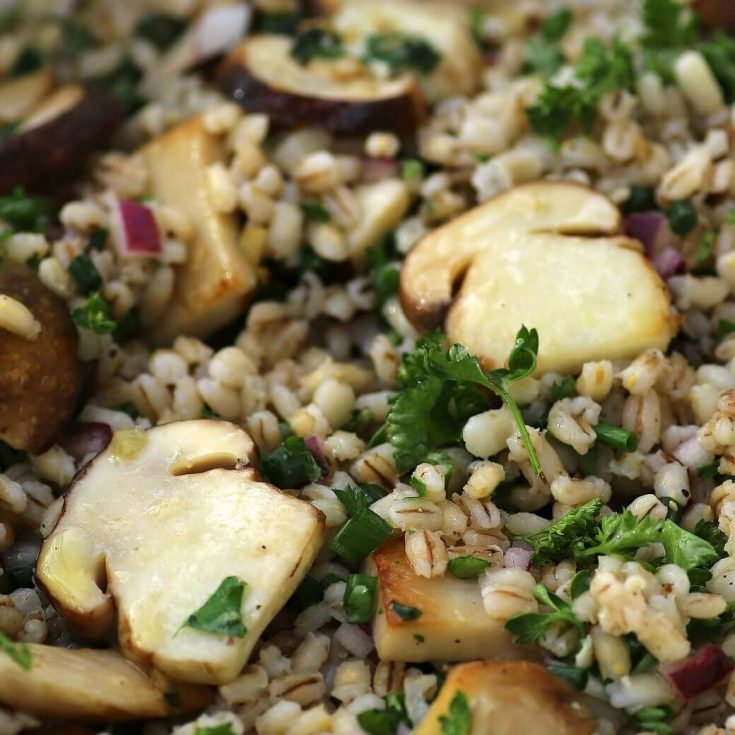 Close up of a barley salad with red onions, herbs, and mushrooms.