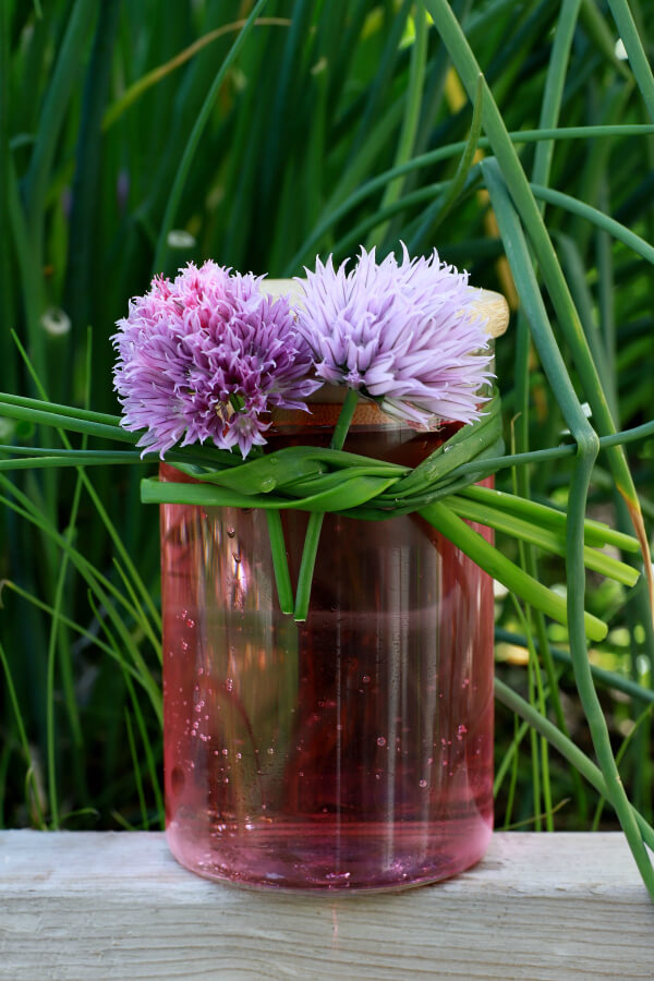 A chive blossom topped glass jar filled with pink vinegar in front of a garden.