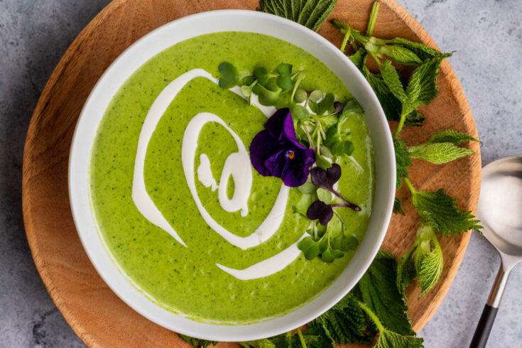Bright green nettle soup with swirls of white cream and microgreen edible flower garnish.