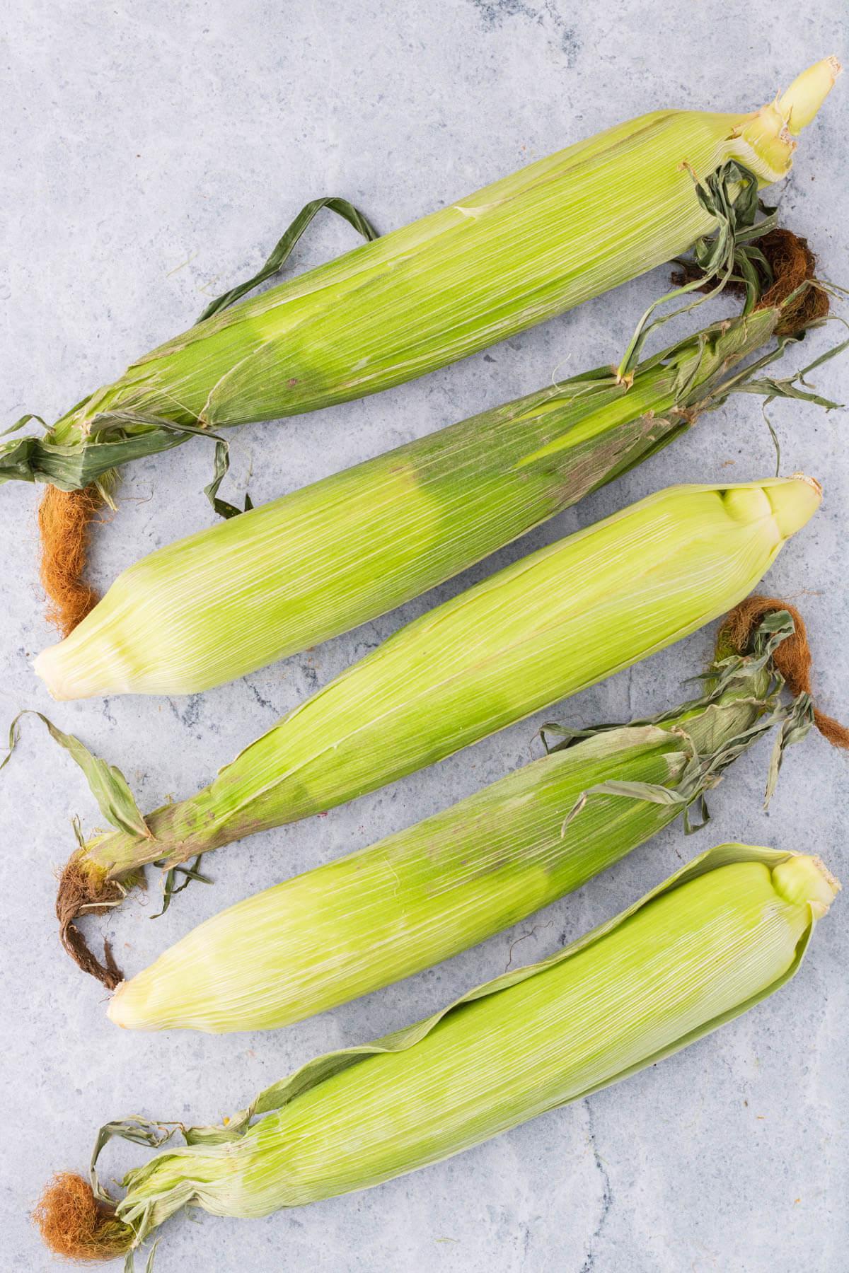 Five green fresh ears of corn.